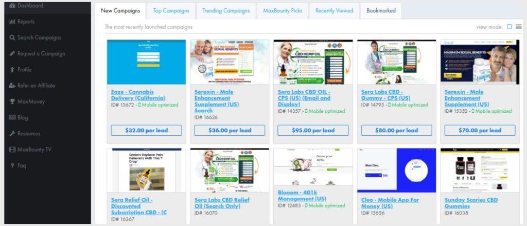 tableau de bord de marketing d'affiliation maxbounty